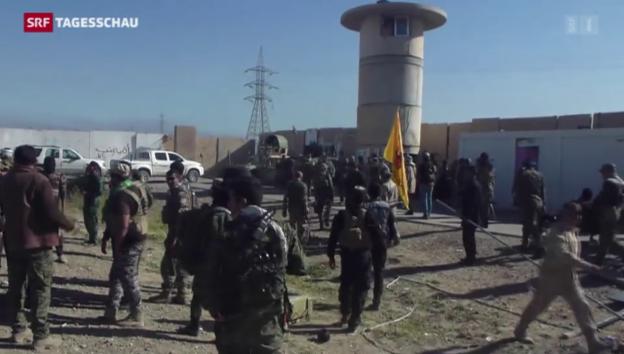 Video «Armee kontrolliert wieder Teile von Tikrit» abspielen