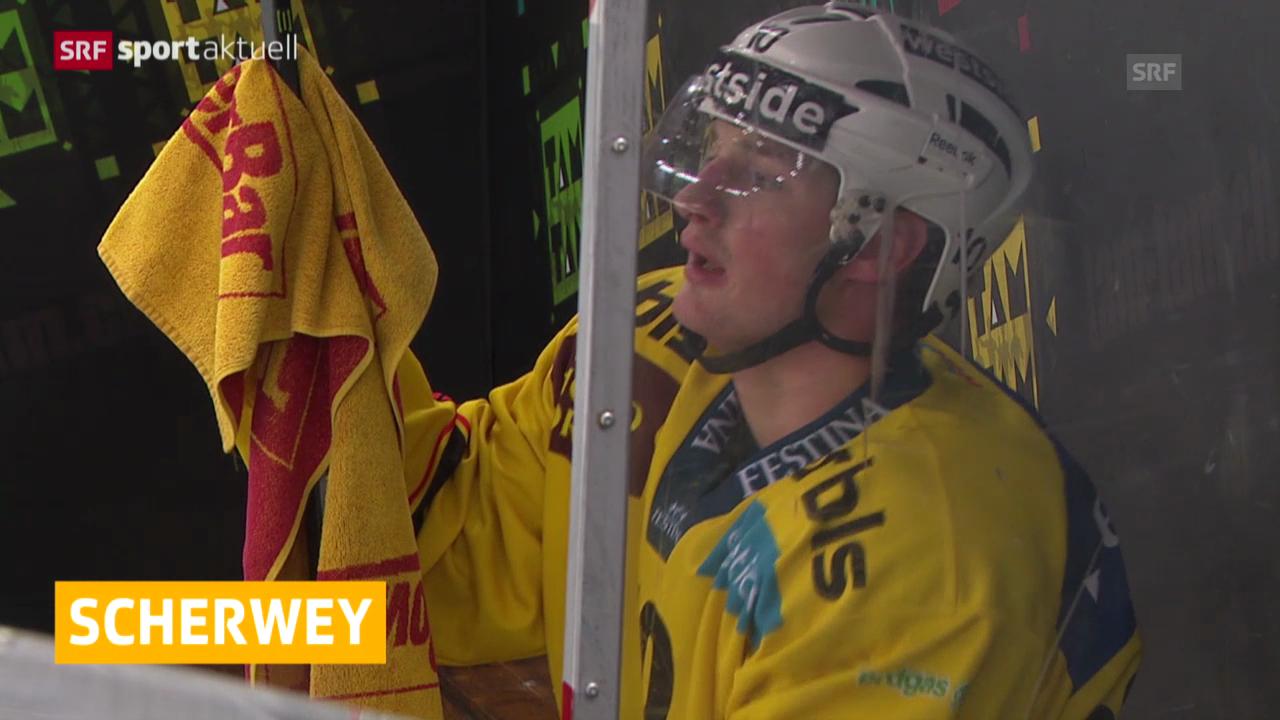Eishockey: NLA, SCB, Tristan Scherwey