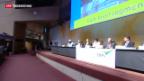 Video «Konferenz zu Gift- und Schadstoffen in Genf» abspielen