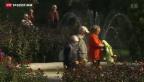 Video «Minuszinsen belasten die Altersvorsorge» abspielen