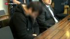 Video «Deutschland debattiert über kriminellen Flüchtling» abspielen