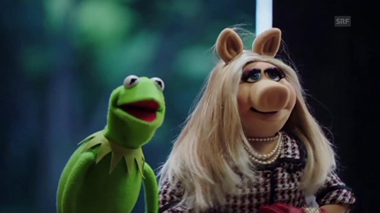 Kermit und Piggy trennen sich (Tagesschau, 5.8.2015)