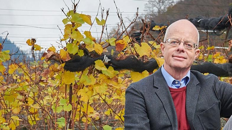 Der neue Gemeindepräsident, Glarus-Nord, Zürich und die Wirtschaft