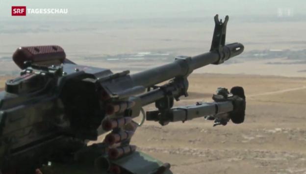 Video «Deutsche Waffen für die Kurden» abspielen