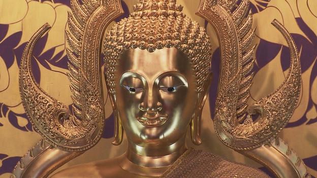Zur buddhistischen Visakha-Puja Feier