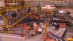 Video «Bundesrat empfiehlt Nein zur Atomausstiegsinitiative» abspielen