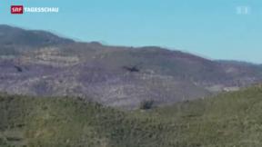 Video «Türkei schiesst russischen Kampfjet ab» abspielen