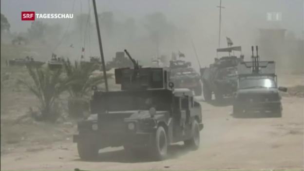 Video «Irakische Armee beginnt Sturm auf IS-Hochburg Falludscha» abspielen