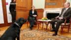 Video «Merkel zu Besuch bei Putin» abspielen