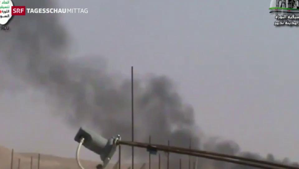 IS erobert Palmyra