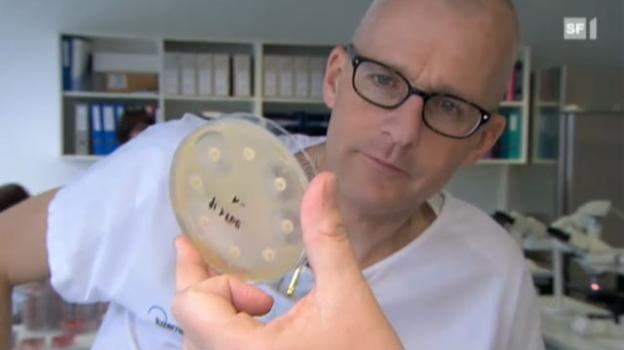 Video «Kampf den Keimen!» abspielen