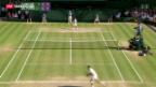 Video «Djokovic nach Tennis-Marathon im Final» abspielen