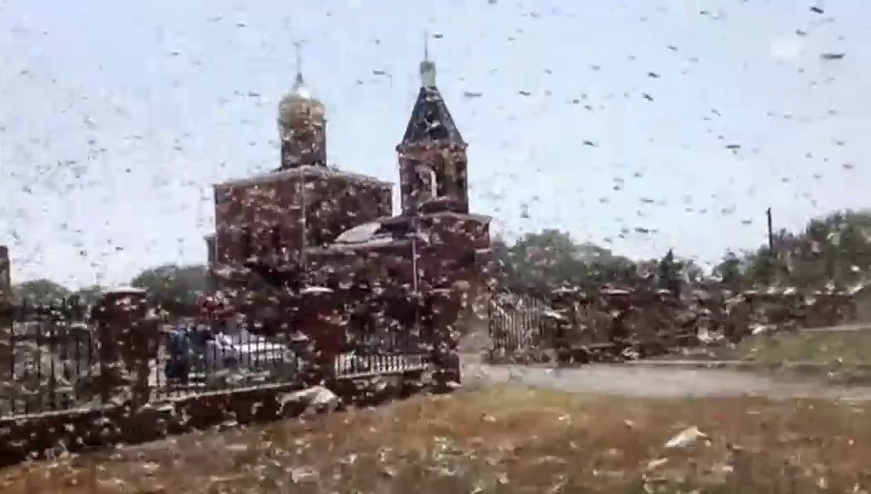 Augenzeuge filmt Heuschreckenplage (russ. Originalton)