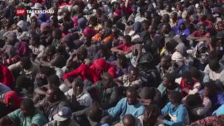Video « UNO-Migrationspakt ist angenommen» abspielen