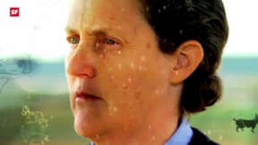 Video «Expedition ins Gehirn: Der grosse Unterschied (3/3)» abspielen