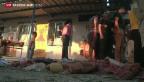 Video «Schule in Gaza bombardiert» abspielen