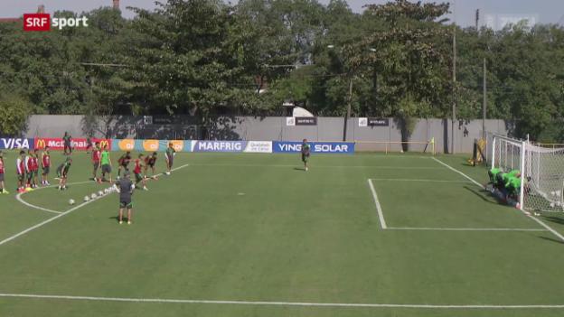 Video «Vorschau auf die Partie Mexiko - Kamerun» abspielen