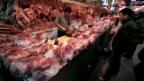 Video «Schweinezucht in China» abspielen