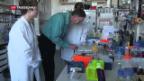 Video «Forschung wirbt für «Horizon 2020»» abspielen