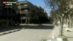 Video «Dramatische Lage in Jarmuk» abspielen