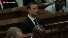 Video «Urteil im Fall Pistorius auf Freitag vertagt» abspielen
