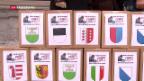 Video «SVP reicht Referendum gegen die Energiestrategie 2050 ein» abspielen