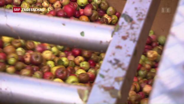 Video «Grosser Durst nach Bio-Apfelsaft» abspielen