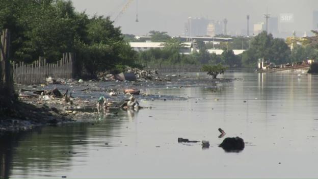 Video «Verschmutztes Wasser in Rio» abspielen