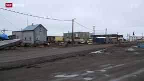 Video «Wettlauf um die Arktis» abspielen