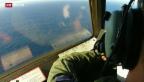 Video «Flugzeug stürzte in den Indischen Ozean» abspielen