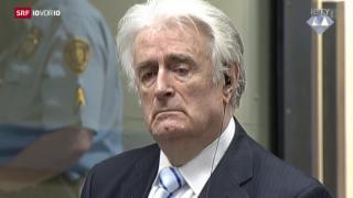 Video «Karadzic verurteilt wegen Genozids» abspielen