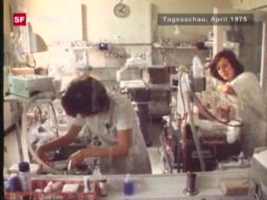Video «Brienzer Fünflinge - ein Rückblick» abspielen