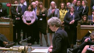 Video «Vorbereitungen für «Brexit ohne Deal»» abspielen