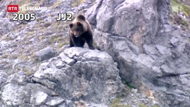 Laschar ir video «telesguard 20120503 urs»