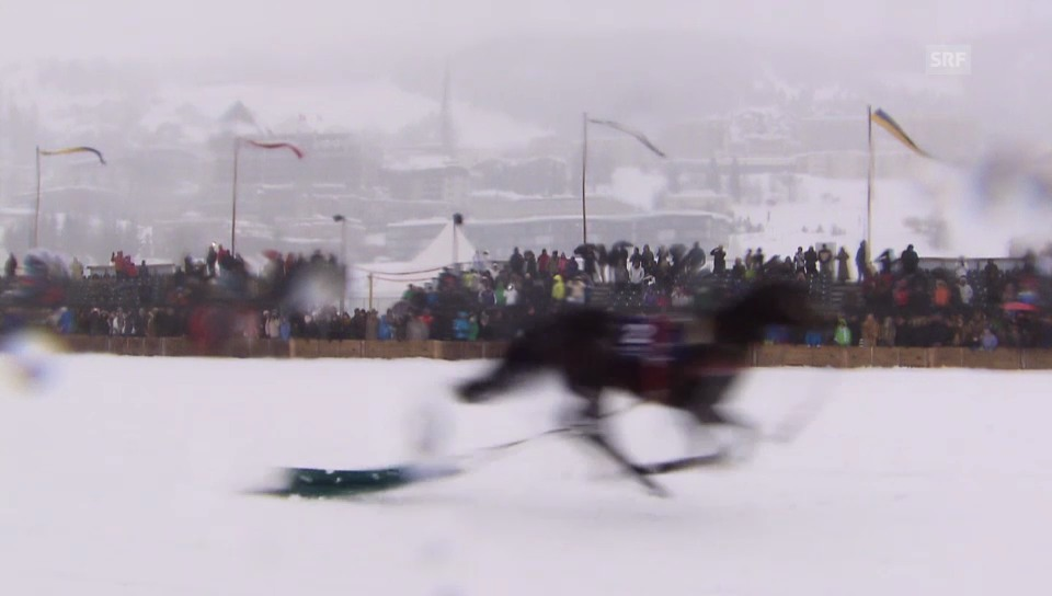 Brigitte Oertli verliert Pferd beim Skijoering