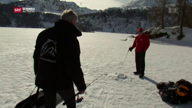 Video «Schweiz aktuell vom 16.03.2017» abspielen