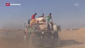Video «Irakische Armee erobert Quartiere in Mossul zurück » abspielen