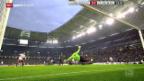 Video «Fussball: HSV-Freiburg» abspielen