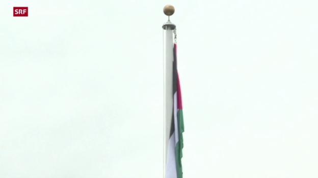 Video «Palästina-Flagge weht neu auf dem UNO-Gelände» abspielen