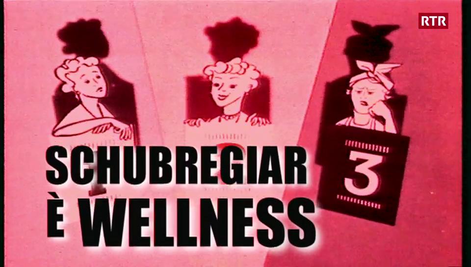 Schubregiar sco wellness - co emprender quai? SR 11-05-2008