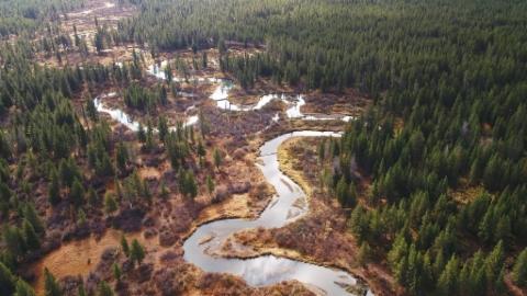 Die grössten Flüsse der Erde: Der Mississippi (3/3)