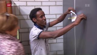Video «FOKUS: Schwierige Jobsuche für «vorläufig Aufgenommene»» abspielen