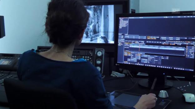 Video «Software stabilisiert und korrigiert Fehler» abspielen