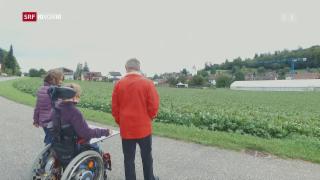 Video «Wie Cannabis bei Krankheiten hilft» abspielen