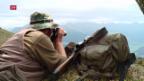 Video «Zu viele Hirsche in Schweizer Wäldern» abspielen