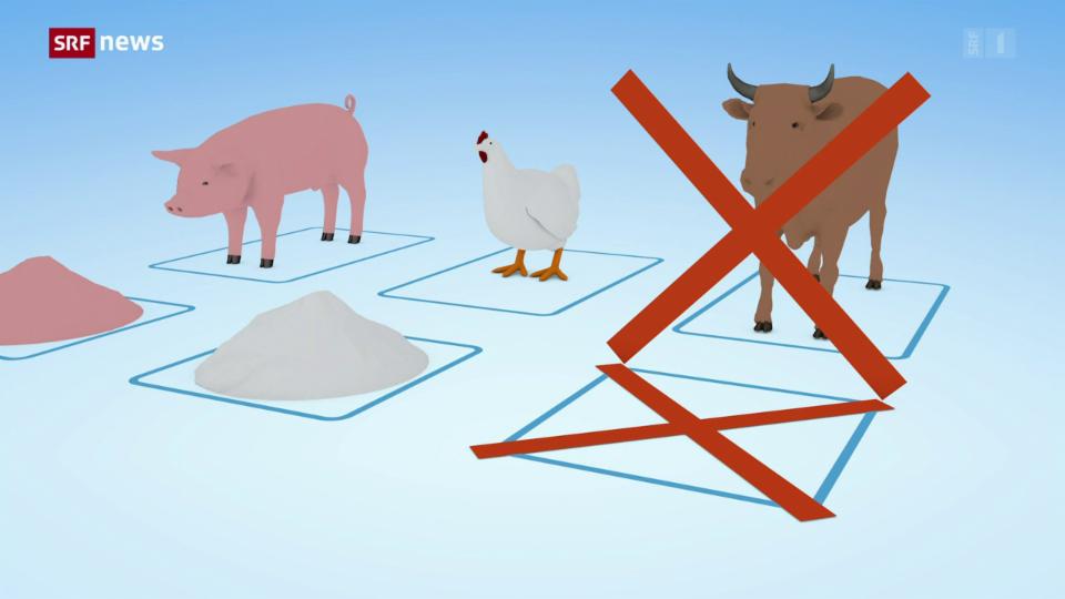 EU und Schweiz wollen Tiermehl teilweise wieder zulassen