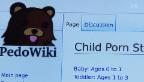 Video «Pädophile im Darknet» abspielen