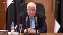 Video «Syriens Aussenminister schliesst Präsidentenwahlen aus» abspielen