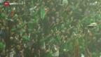 Video «Fussball: EM-Barrage Bosnien - Irland» abspielen