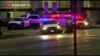 Video «Schüsse auf Polizisten in Dallas» abspielen